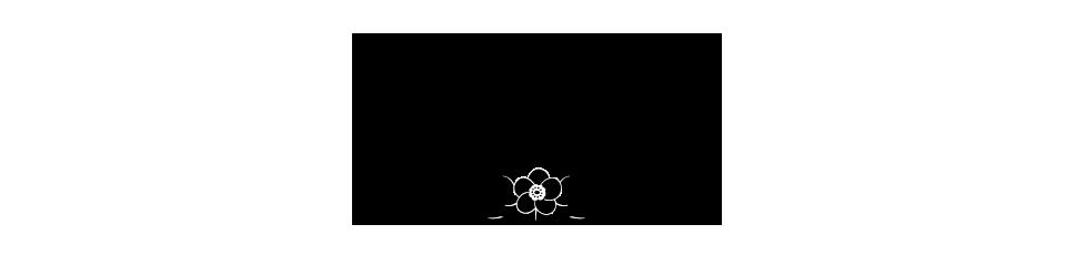 add1へ,牡丹・桜・椿の模様